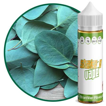 Valeo One – Eukalyptus Menthol Liquid 50ml